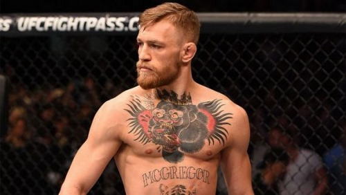 مبارزه conor mcgregor و حبیب