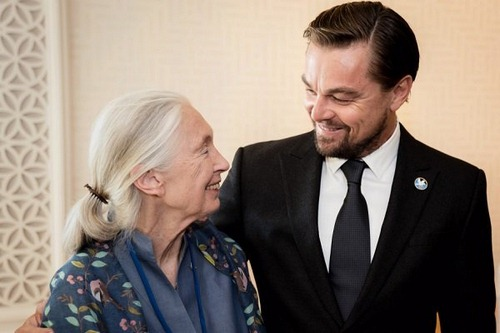 مصاحبه با Leonardo Wilhelm DiCaprio را چگونه می شود؟